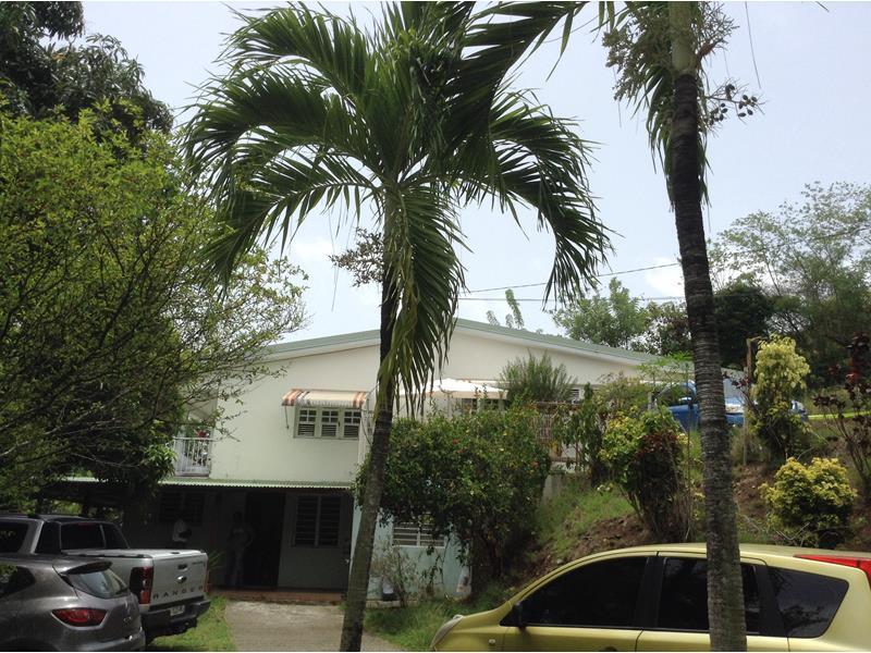 Fregate est 3 villa s par e en 2 niveaux jardin 4130 m for Jardin 2 niveaux